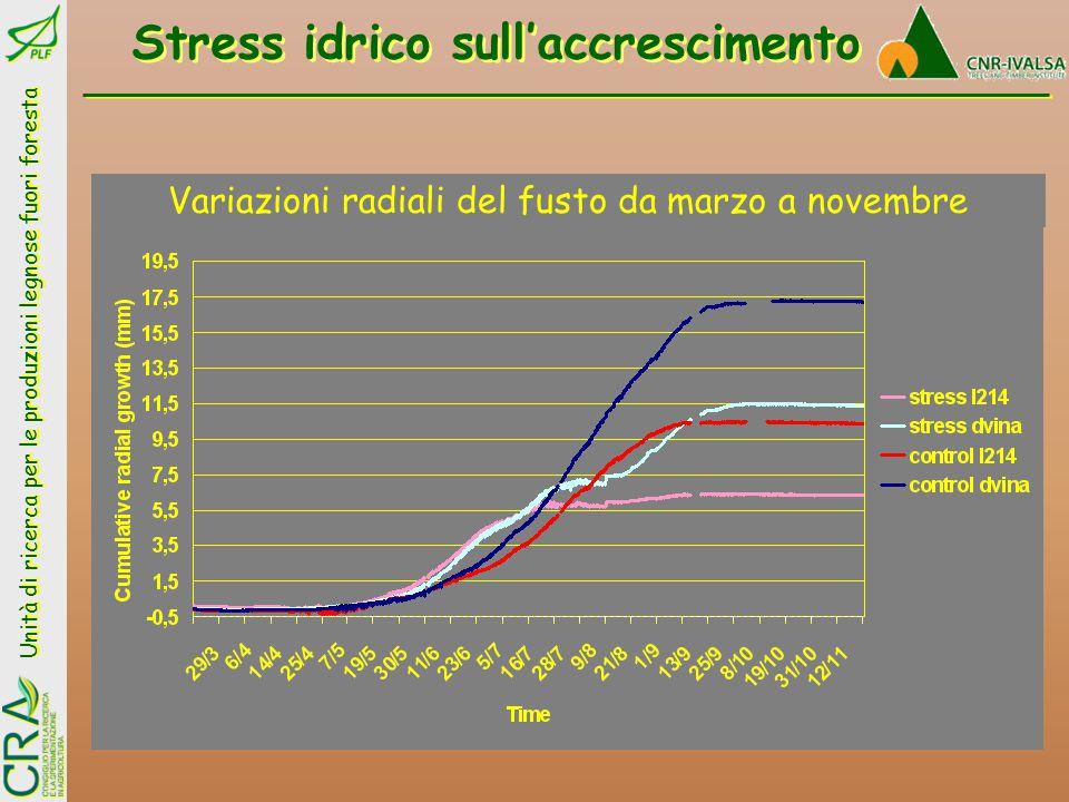Stress idrico sull'accrescimento