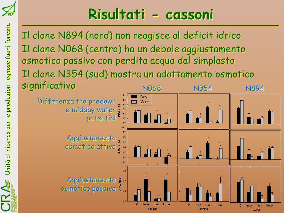 Risultati - cassoni Il clone N894 (nord) non reagisce al deficit idrico.