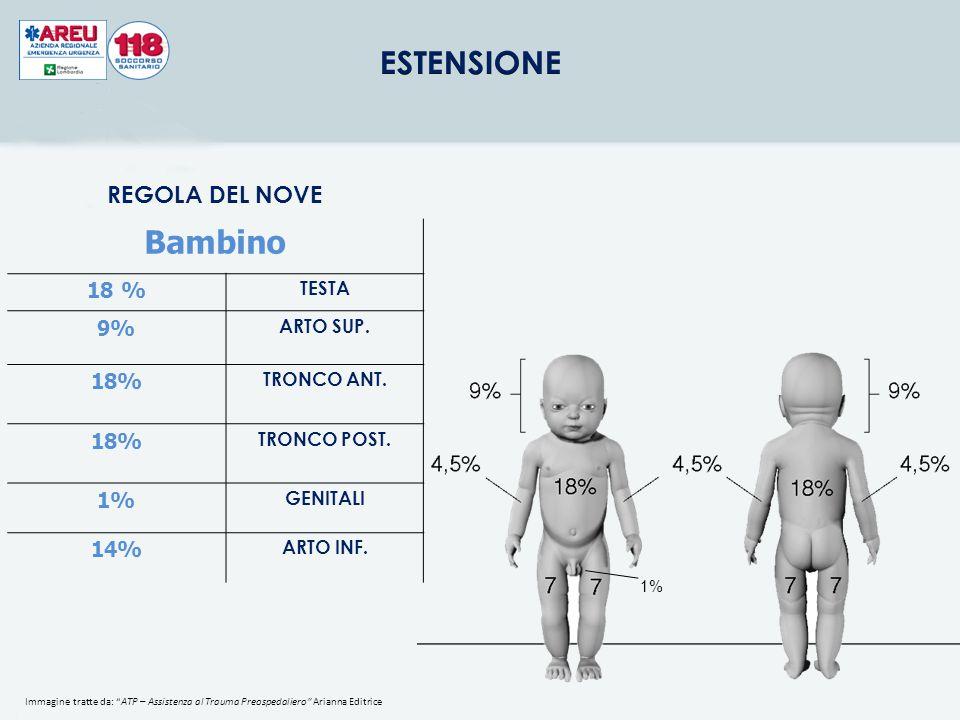 Bambino REGOLA DEL NOVE 18 % 9% 18% 1% 14% TESTA ARTO SUP. TRONCO ANT.