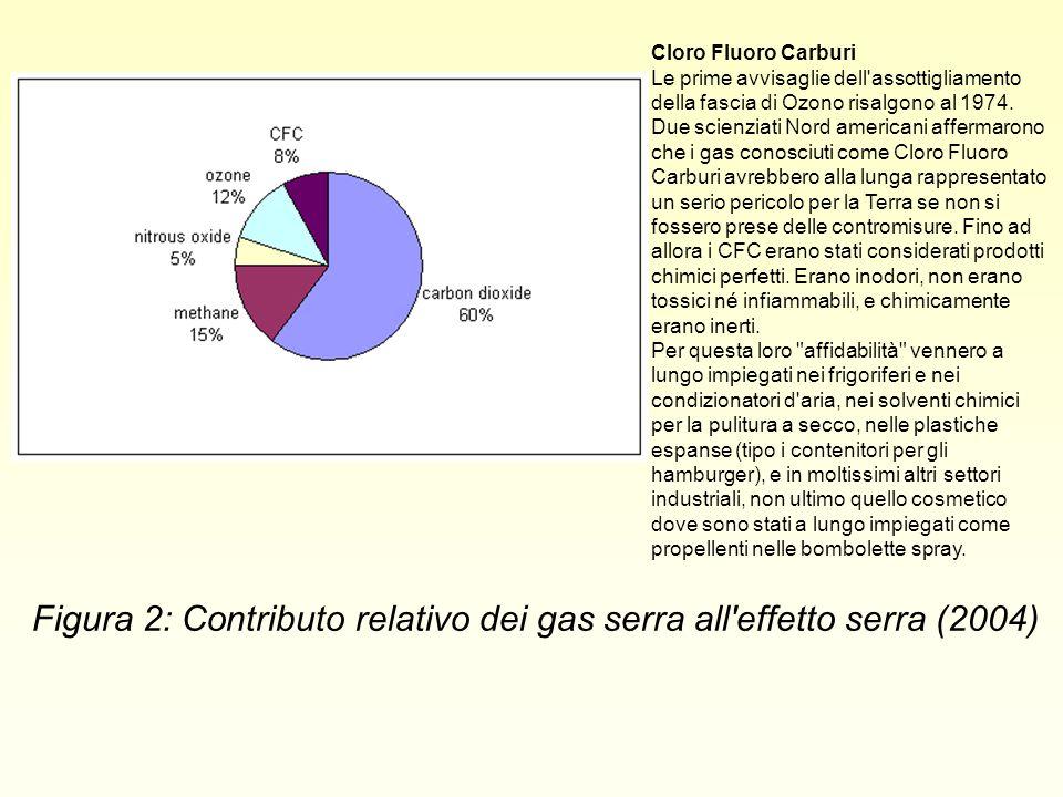 Figura 2: Contributo relativo dei gas serra all effetto serra (2004)