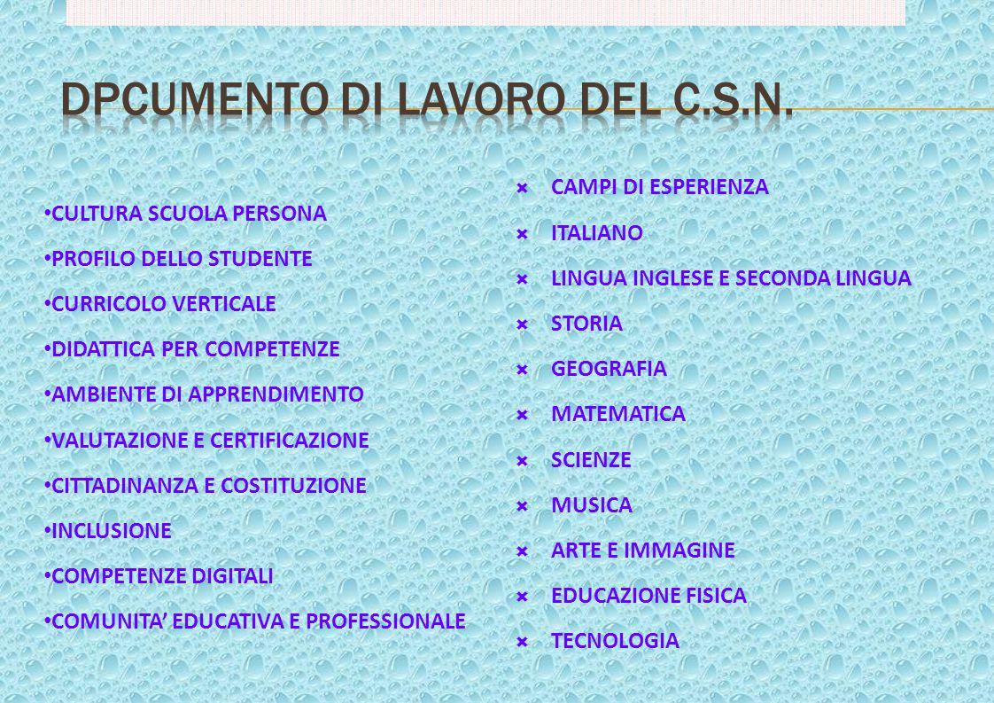 DPCUMENTO DI LAVORO DEL C.S.N.