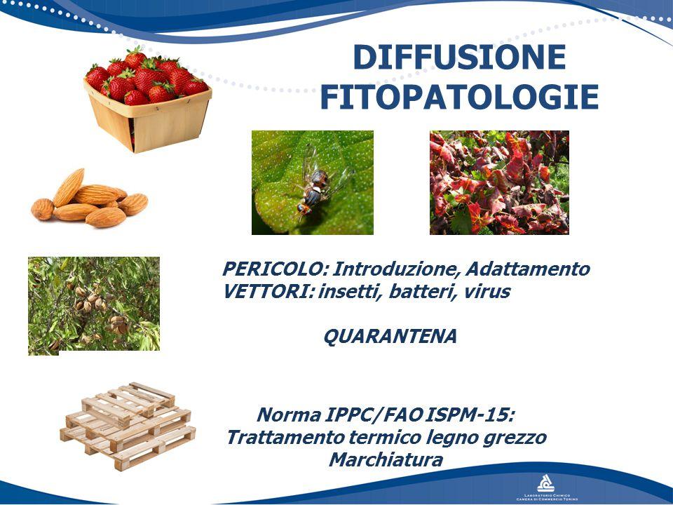 DIFFUSIONE FITOPATOLOGIE
