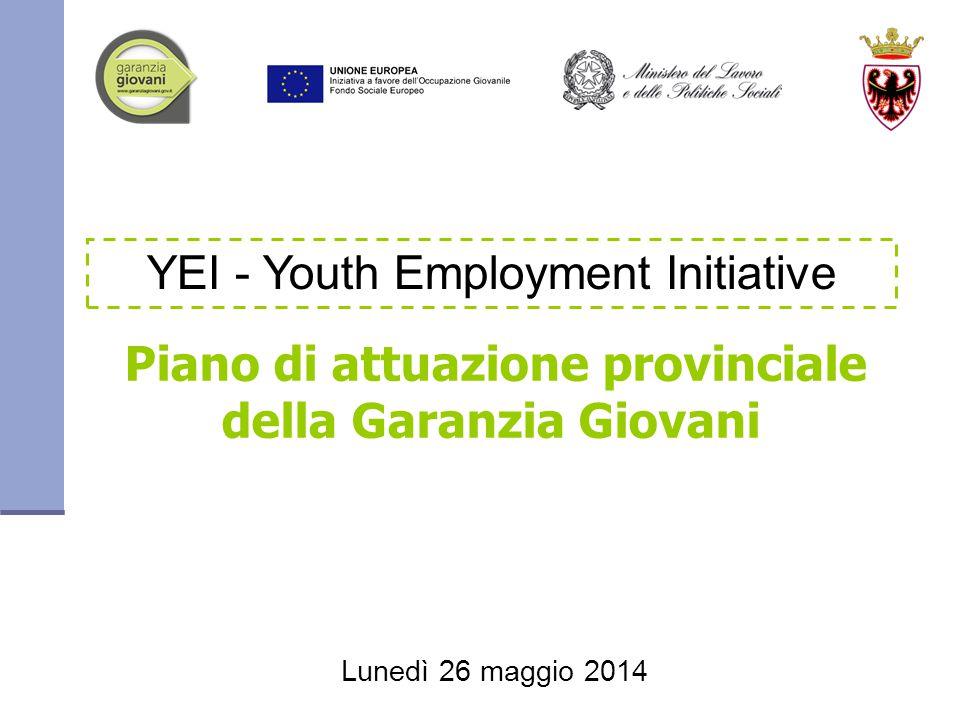 Piano di attuazione provinciale della Garanzia Giovani