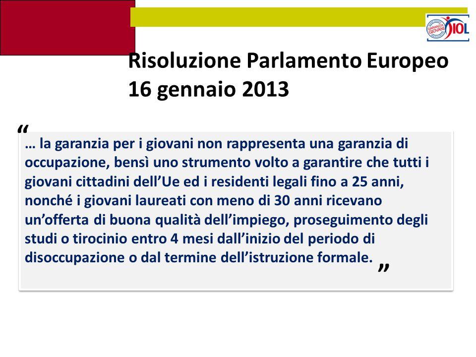 Risoluzione Parlamento Europeo 16 gennaio 2013