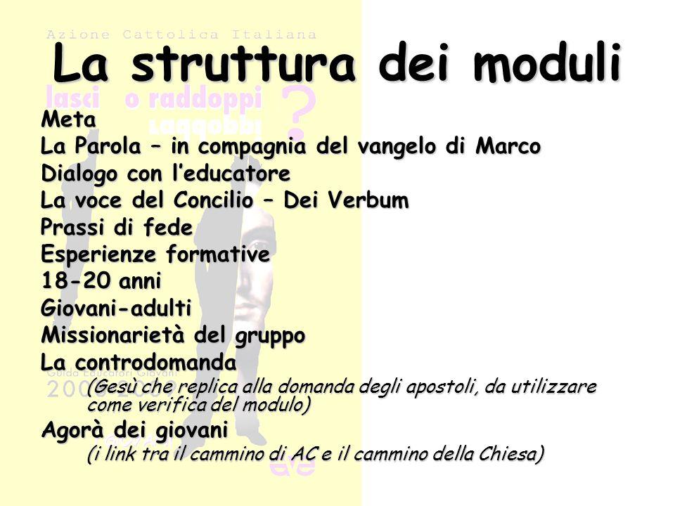 La struttura dei moduli