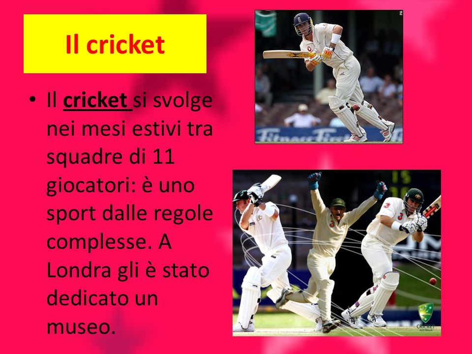 Il cricket