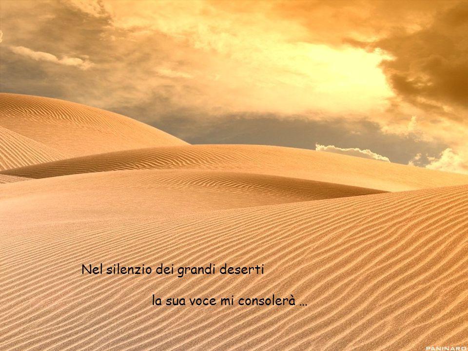 Nel silenzio dei grandi deserti