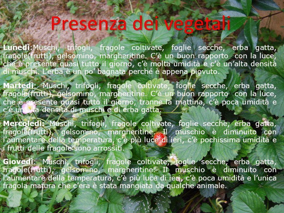 Presenza dei vegetali