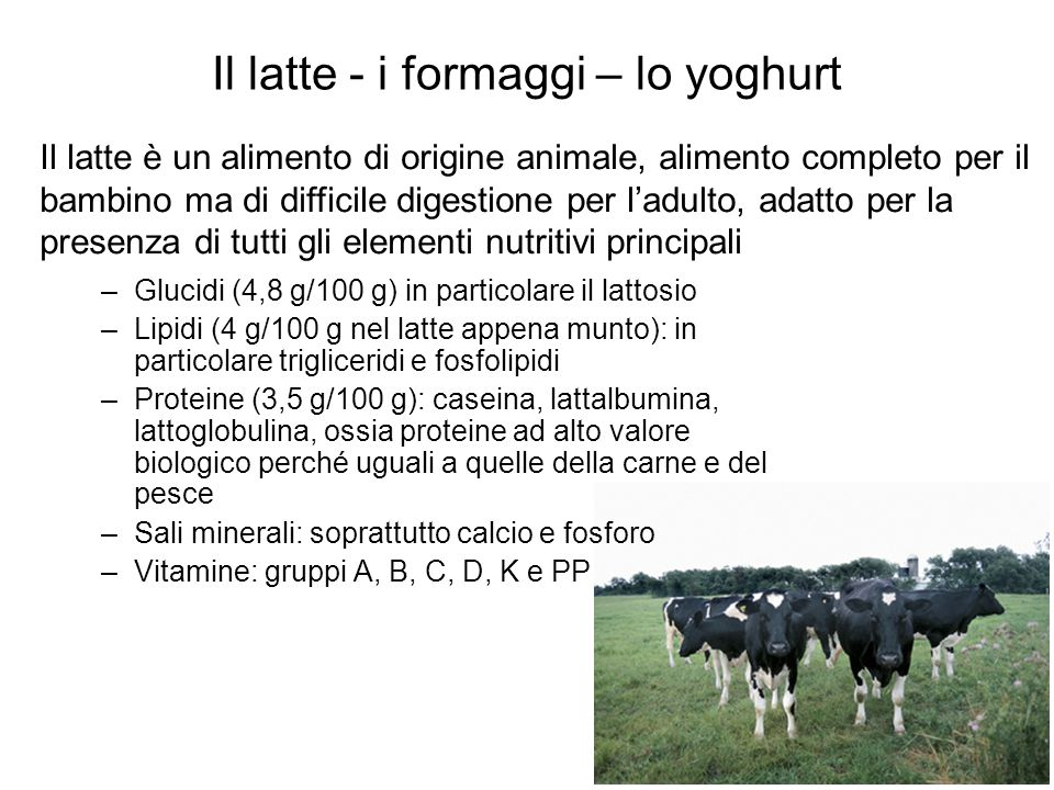 Il latte - i formaggi – lo yoghurt