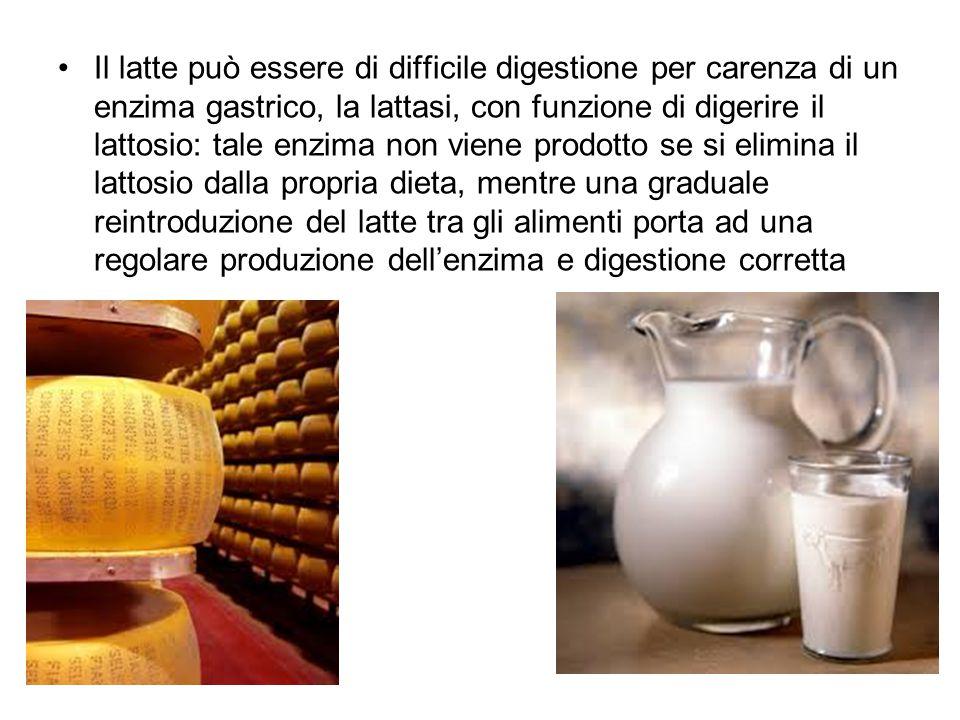 Il latte può essere di difficile digestione per carenza di un enzima gastrico, la lattasi, con funzione di digerire il lattosio: tale enzima non viene prodotto se si elimina il lattosio dalla propria dieta, mentre una graduale reintroduzione del latte tra gli alimenti porta ad una regolare produzione dell'enzima e digestione corretta