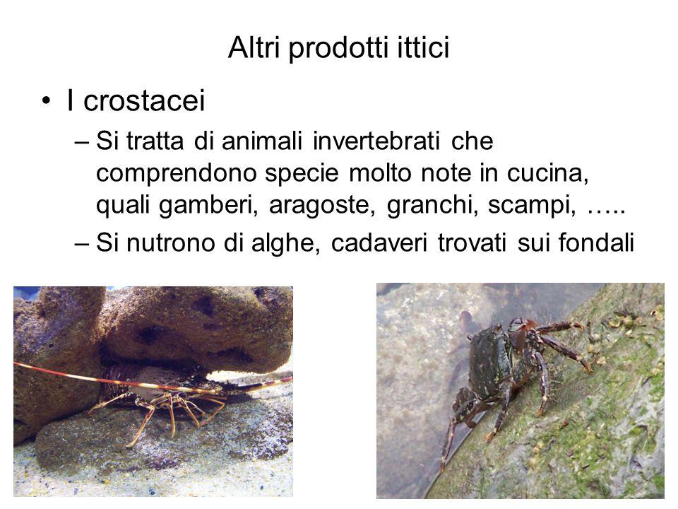 Altri prodotti ittici I crostacei