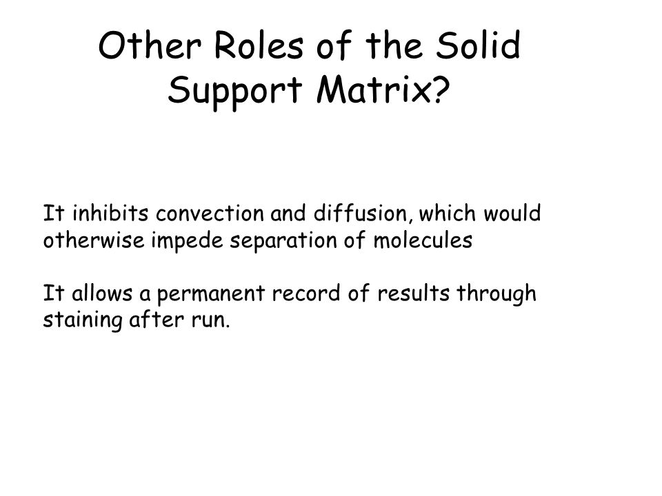 Other Roles of the Solid Support Matrix