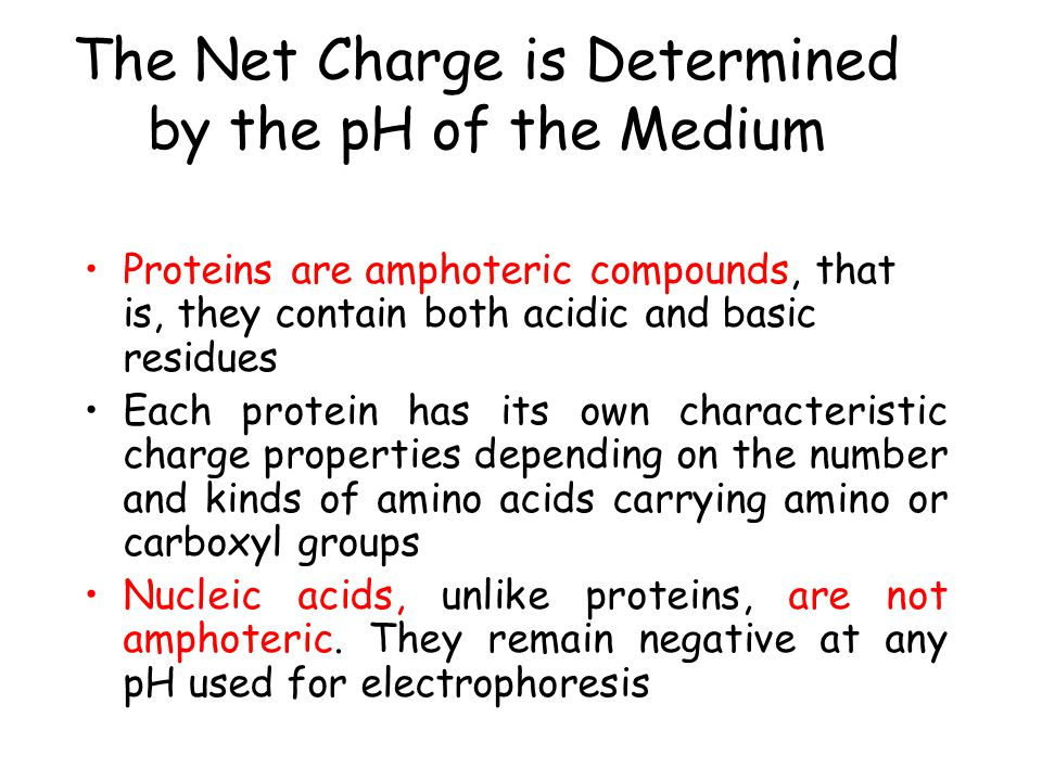The Net Charge is Determined by the pH of the Medium