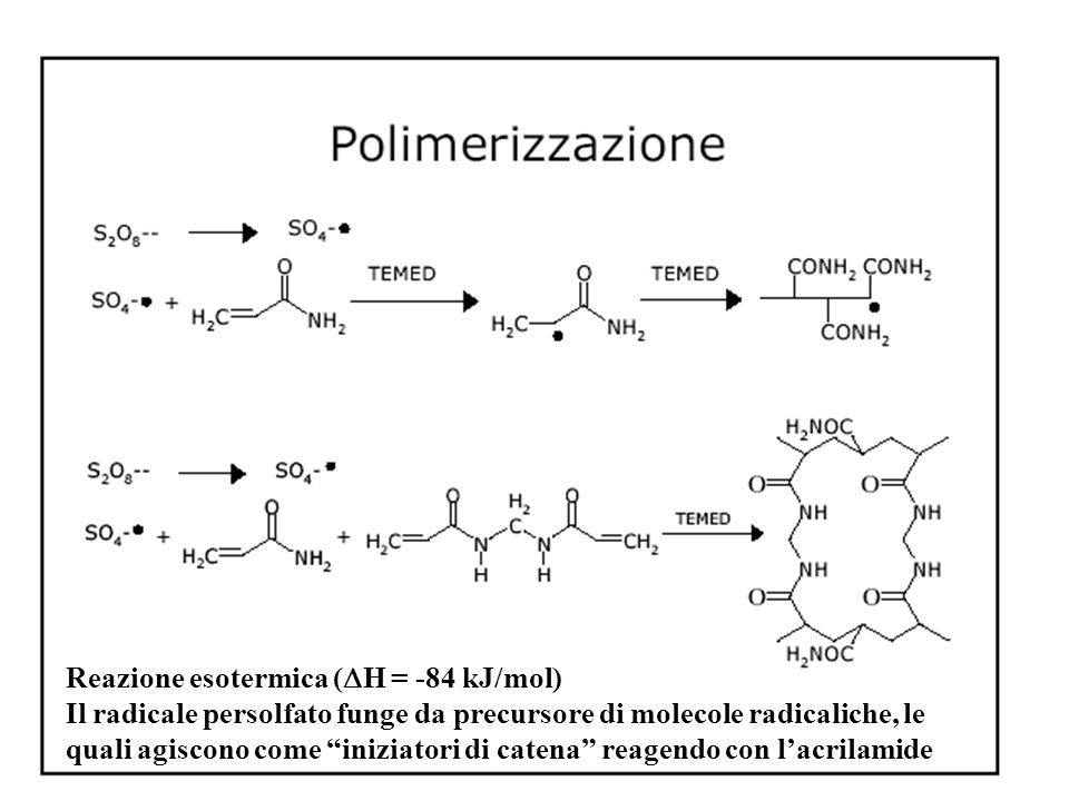 Reazione esotermica (DH = -84 kJ/mol)