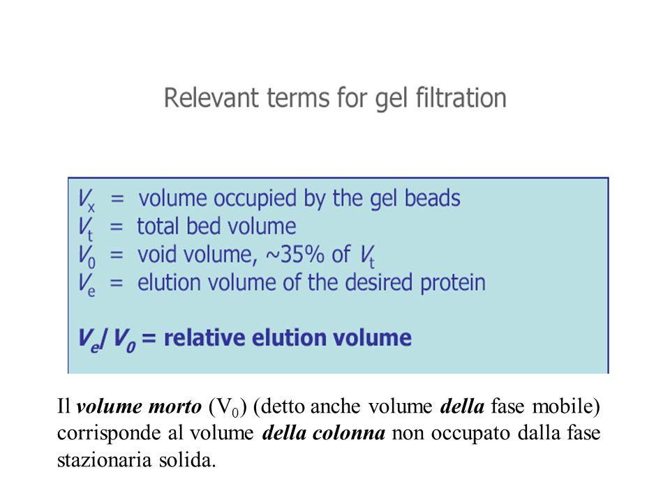 Il volume morto (V0) (detto anche volume della fase mobile) corrisponde al volume della colonna non occupato dalla fase stazionaria solida.