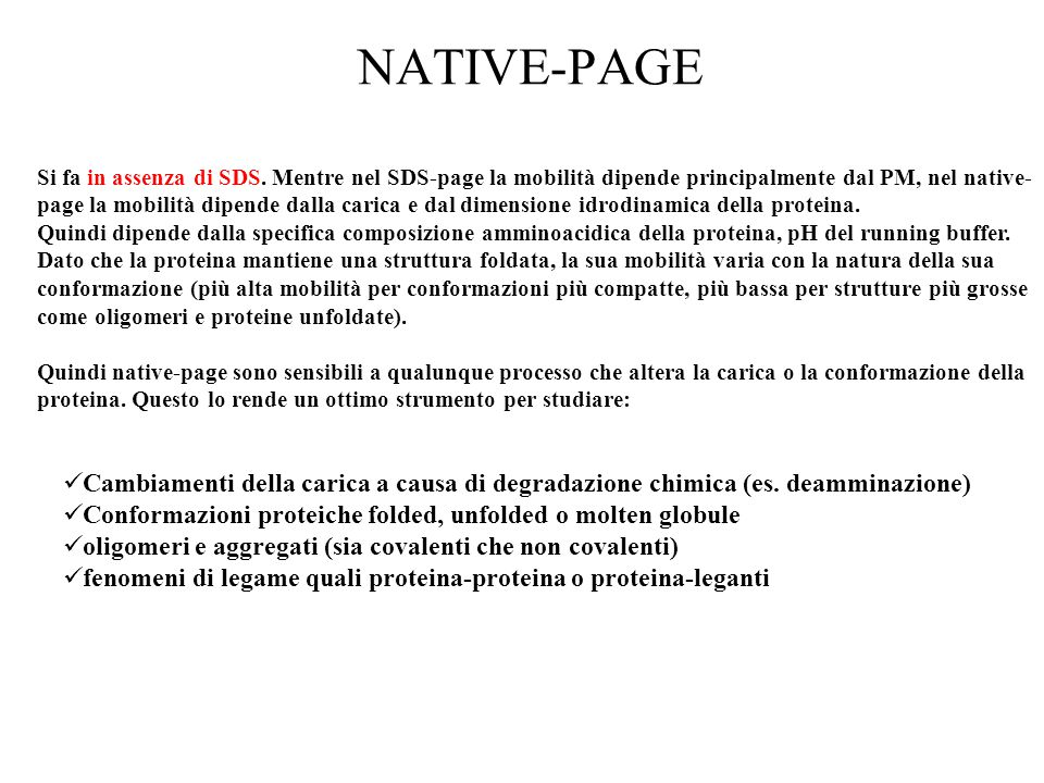 NATIVE-PAGE