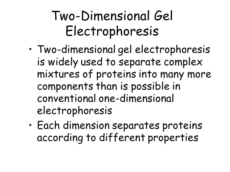 Two-Dimensional Gel Electrophoresis