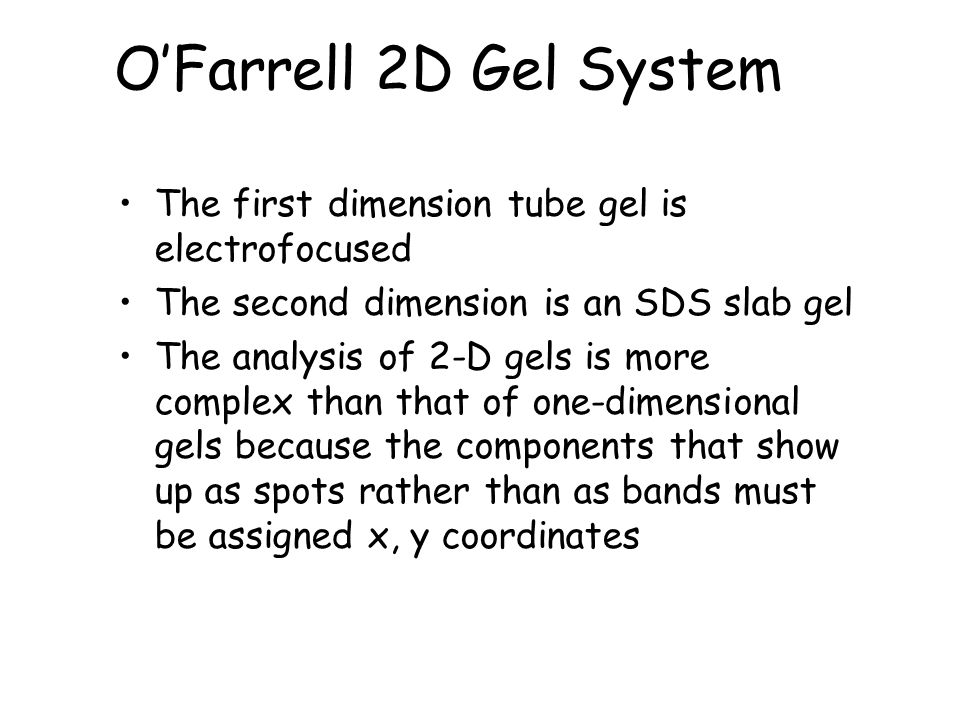 O'Farrell 2D Gel System The first dimension tube gel is electrofocused