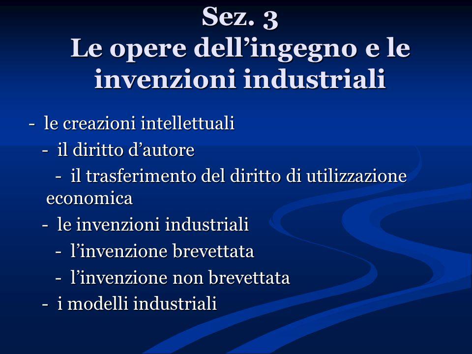 Sez. 3 Le opere dell'ingegno e le invenzioni industriali