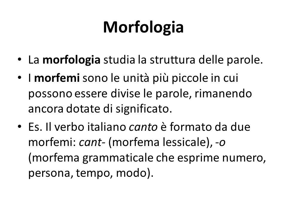 Morfologia La morfologia studia la struttura delle parole.