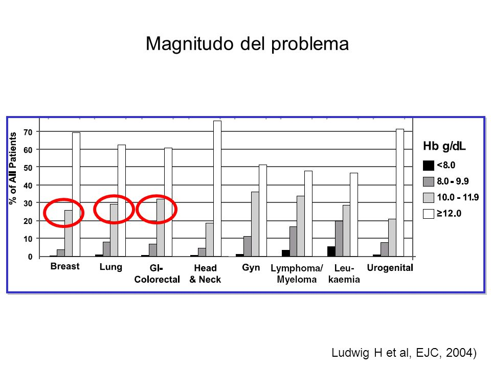 Magnitudo del problema