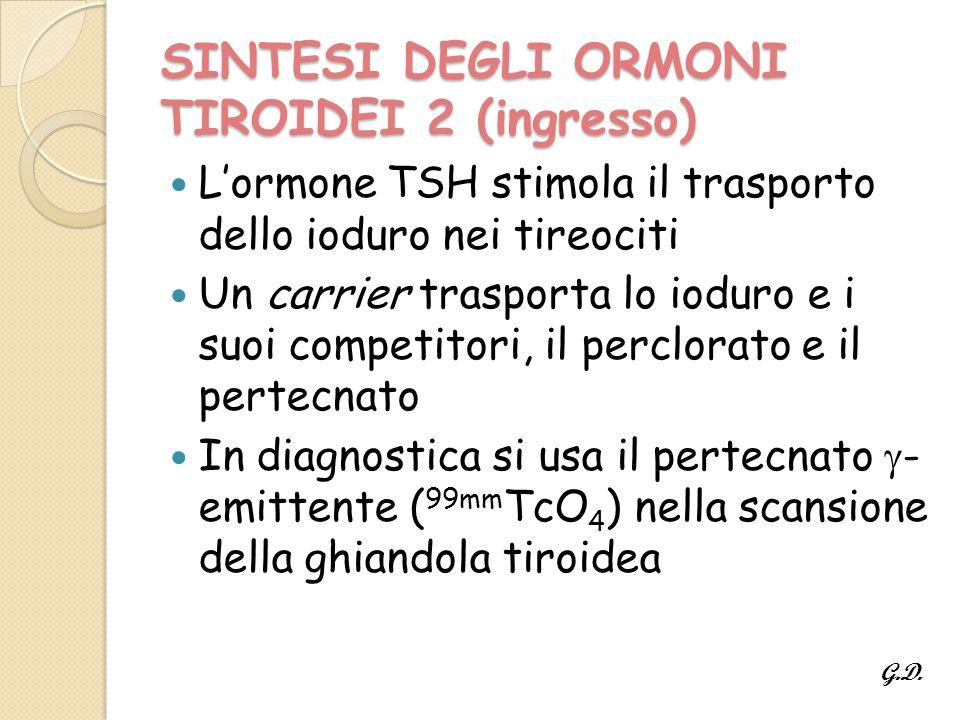 SINTESI DEGLI ORMONI TIROIDEI 2 (ingresso)