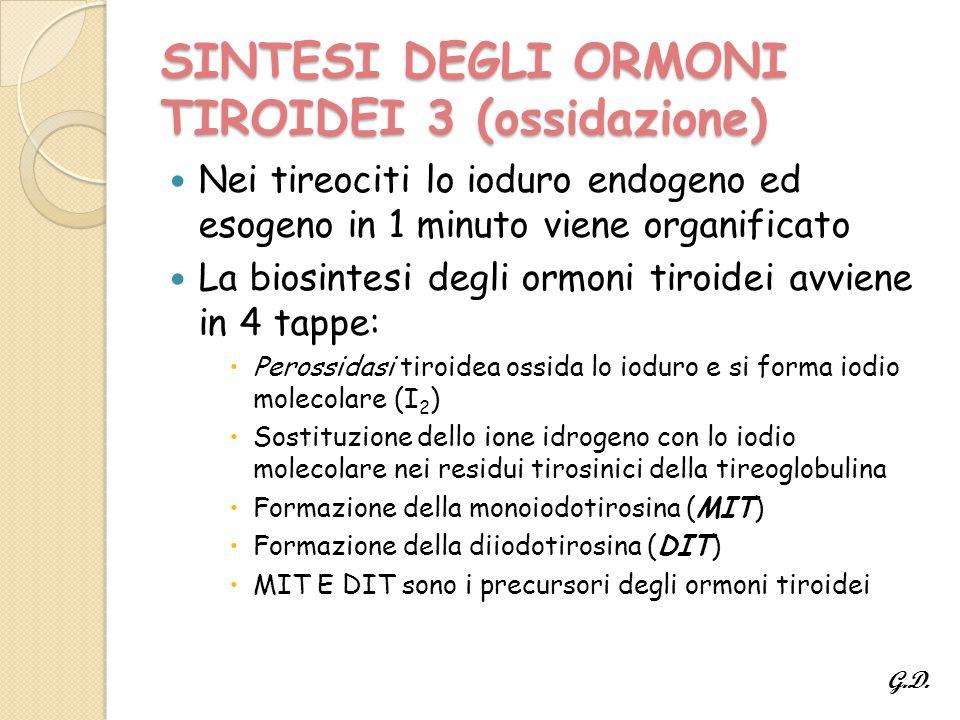SINTESI DEGLI ORMONI TIROIDEI 3 (ossidazione)