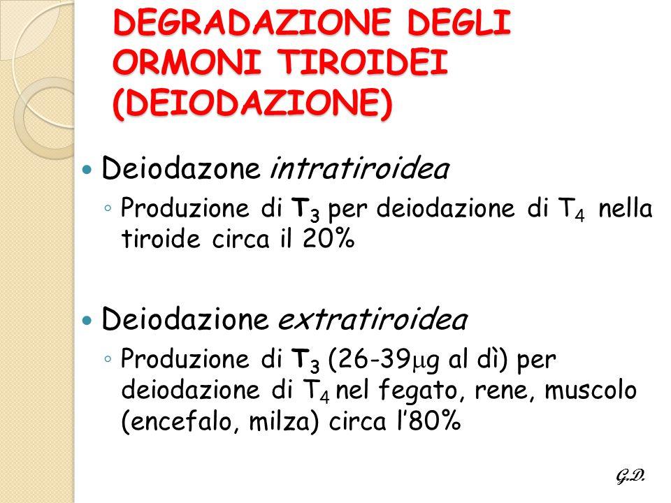 DEGRADAZIONE DEGLI ORMONI TIROIDEI (DEIODAZIONE)