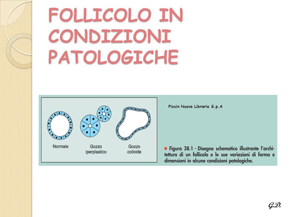 FOLLICOLO IN CONDIZIONI PATOLOGICHE