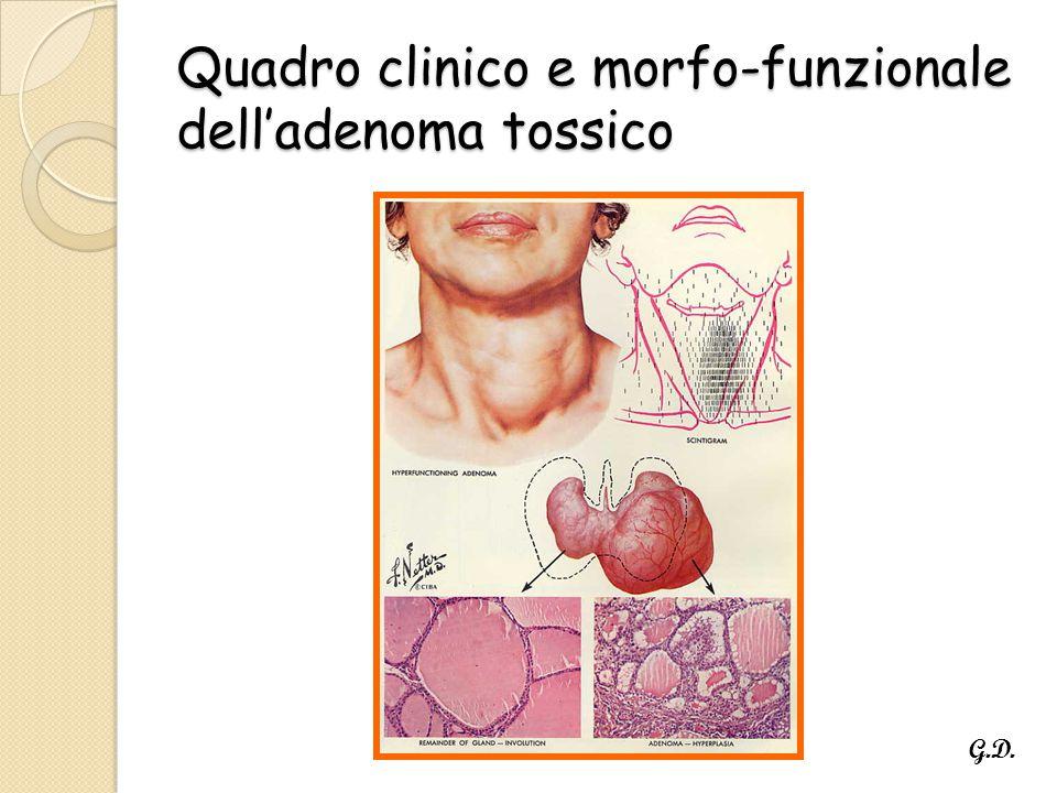 Quadro clinico e morfo-funzionale dell'adenoma tossico