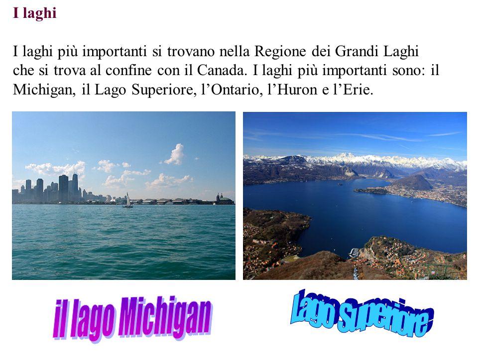 il lago Michigan Lago Superiore I laghi