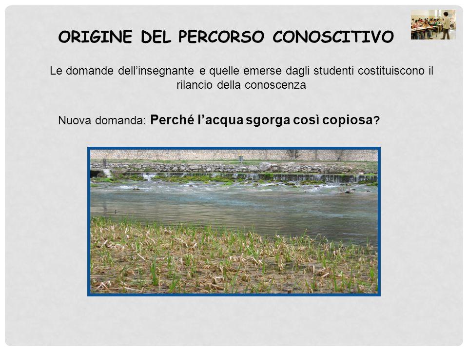 ORIGINE DEL PERCORSO CONOSCITIVO