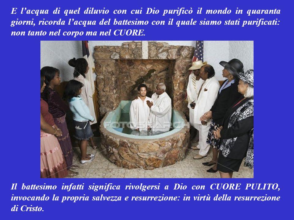 E l'acqua di quel diluvio con cui Dio purificò il mondo in quaranta giorni, ricorda l'acqua del battesimo con il quale siamo stati purificati: non tanto nel corpo ma nel CUORE.