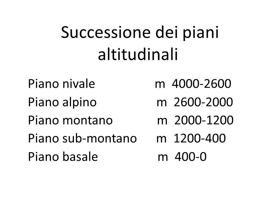 Successione dei piani altitudinali