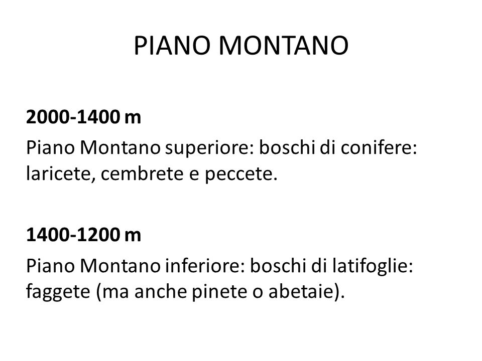 PIANO MONTANO