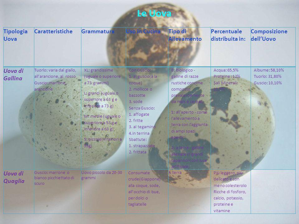 Le Uova Tipologia Uova Caratteristiche Grammatura Uso in Cucina