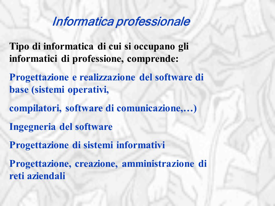 Informatica professionale