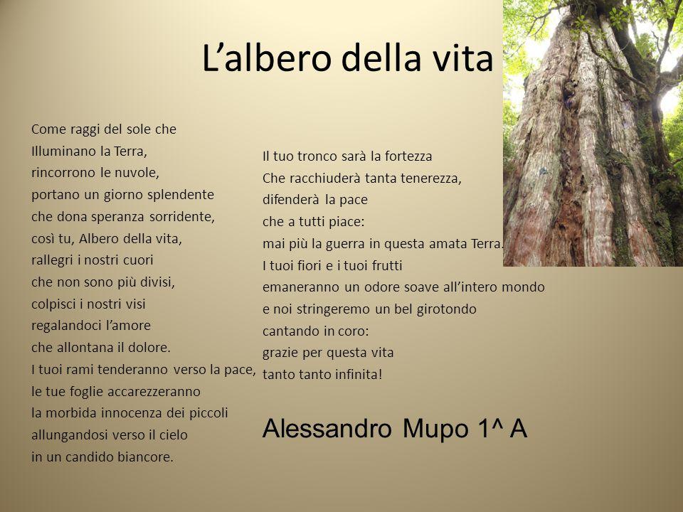 L'albero della vita Alessandro Mupo 1^ A