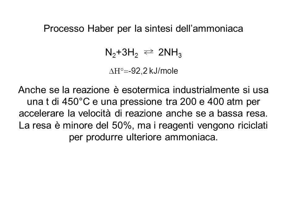 Processo Haber per la sintesi dell'ammoniaca