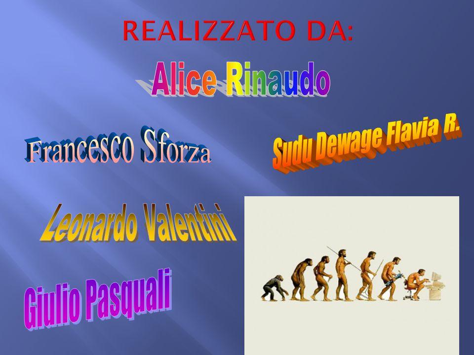 REALIZZATO DA: Alice Rinaudo Francesco Sforza Sudu Dewage Flavia R.