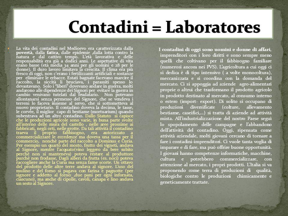Contadini = Laboratores