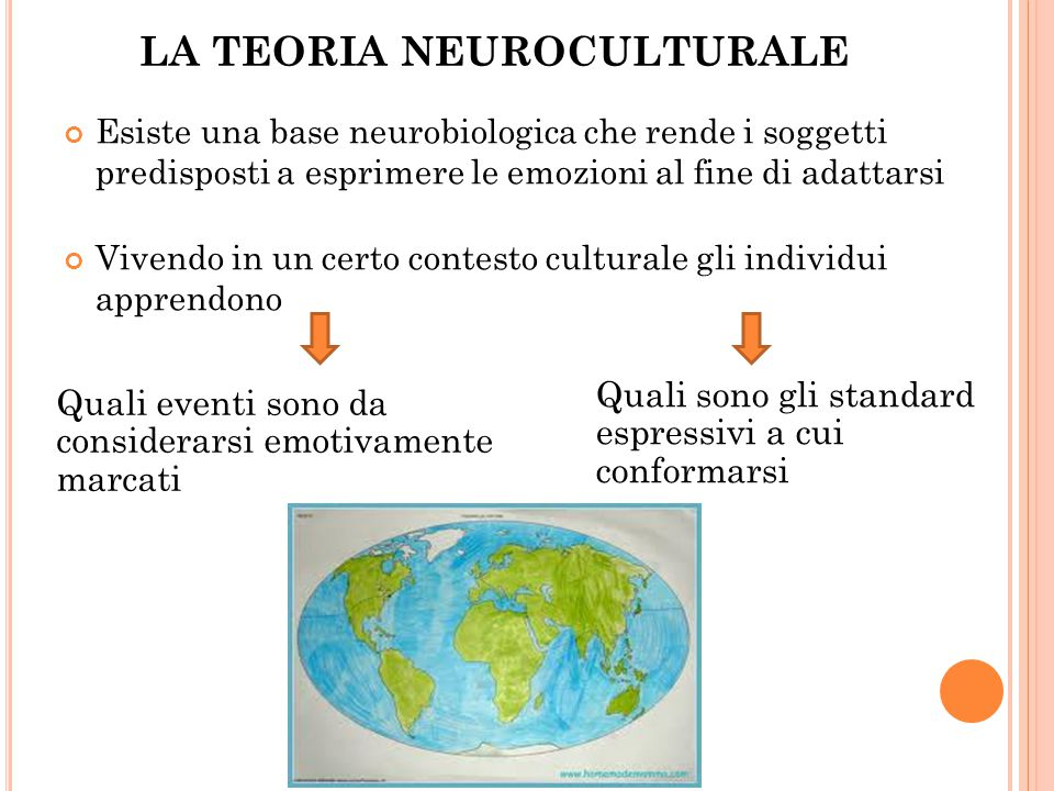 LA TEORIA NEUROCULTURALE