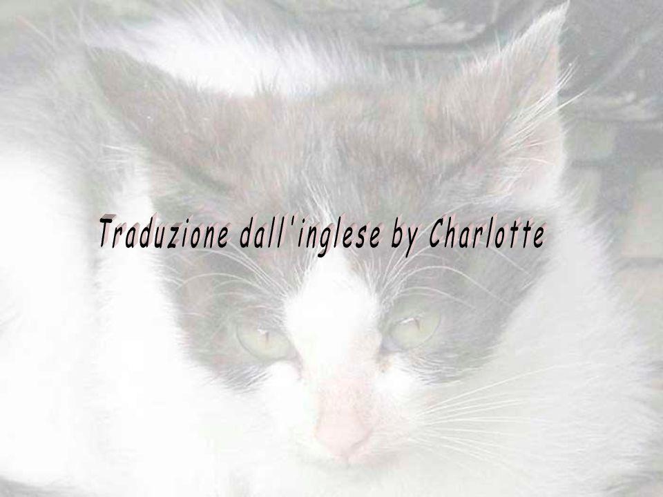 Traduzione dall inglese by Charlotte