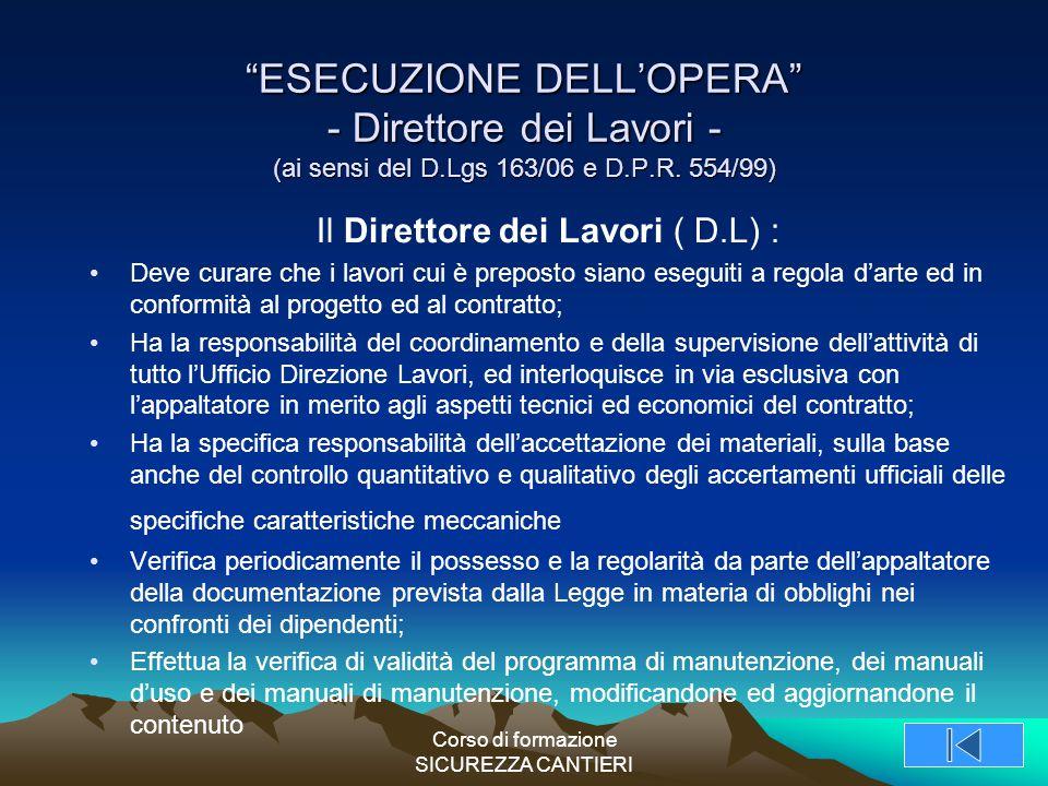 ESECUZIONE DELL'OPERA - Direttore dei Lavori - (ai sensi del D