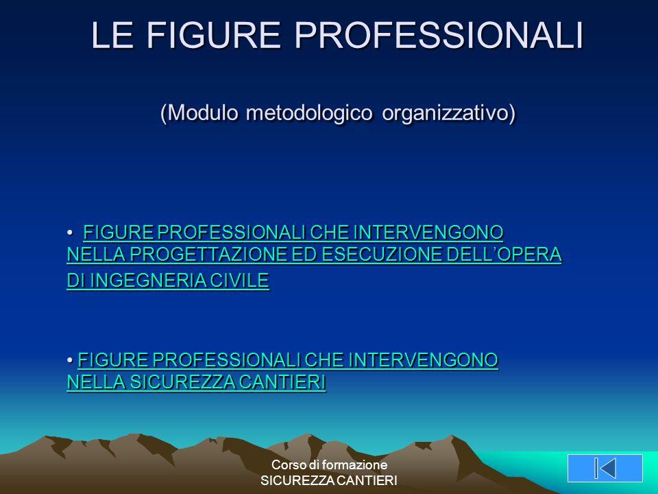 LE FIGURE PROFESSIONALI (Modulo metodologico organizzativo)