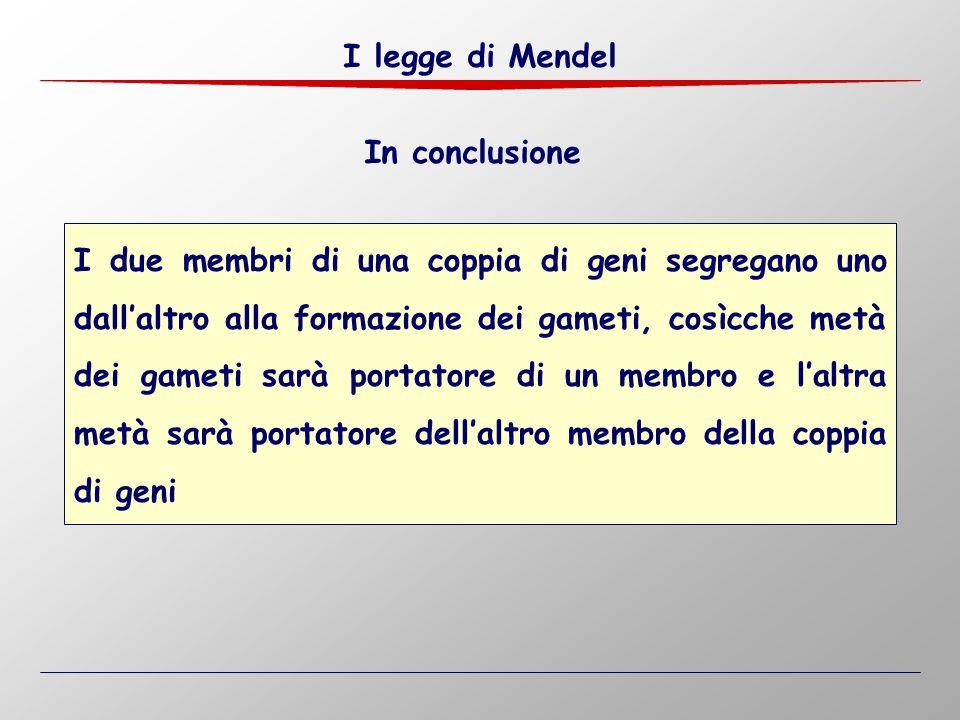 I legge di Mendel In conclusione.