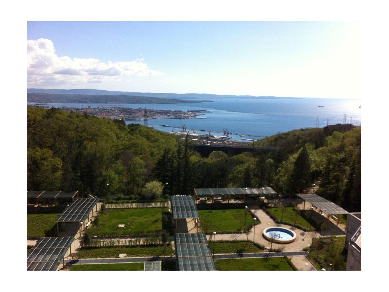 e infine ottico: qui è stata messa una foto della vista dal balcone della SISSA, ovviamente è sostituibile con qualunque altra fotografia.