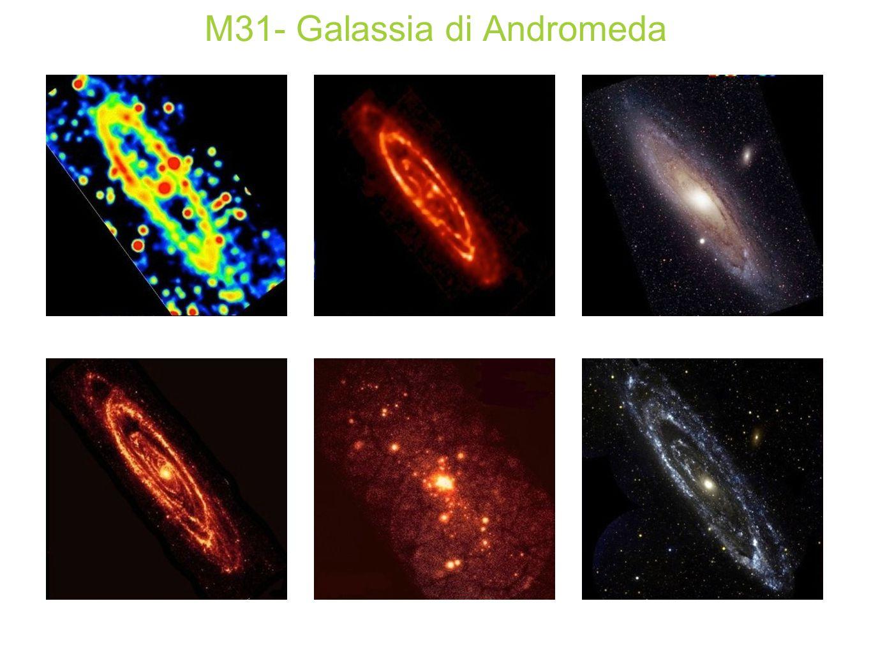 M31- Galassia di Andromeda