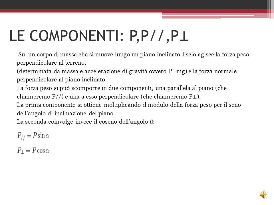 LE COMPONENTI: P,P//,P⊥
