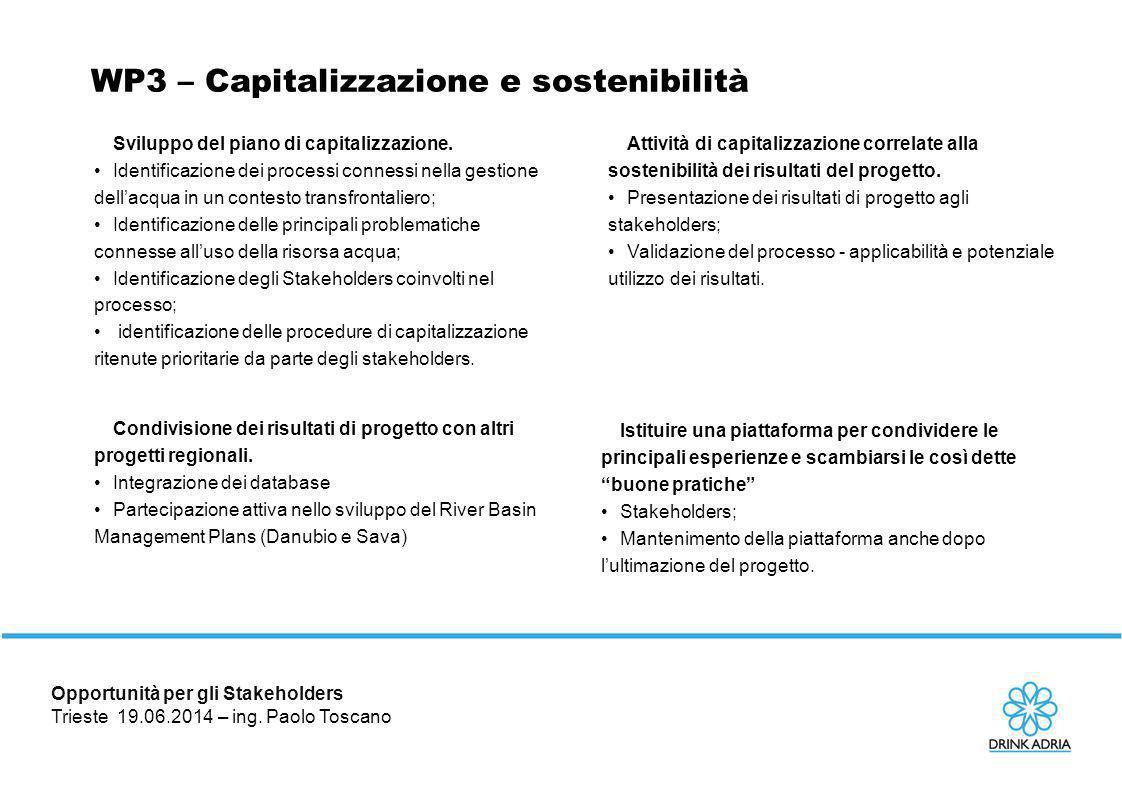 WP3 – Capitalizzazione e sostenibilità